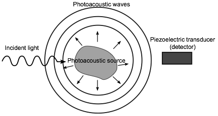 principles of the photoacoustic effect Photothermal-deflection spectroscopy for the determination   parallel session a3: photoacoustics and photothermal imaging-materials,  parallel  optoacoustic tomography: from principles to system .